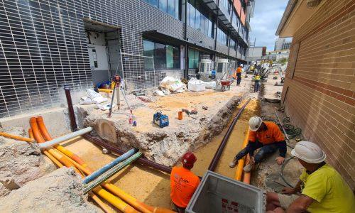 Backflow prevention and prevntative maintenance plumber Sydney Parramatta Moorebank